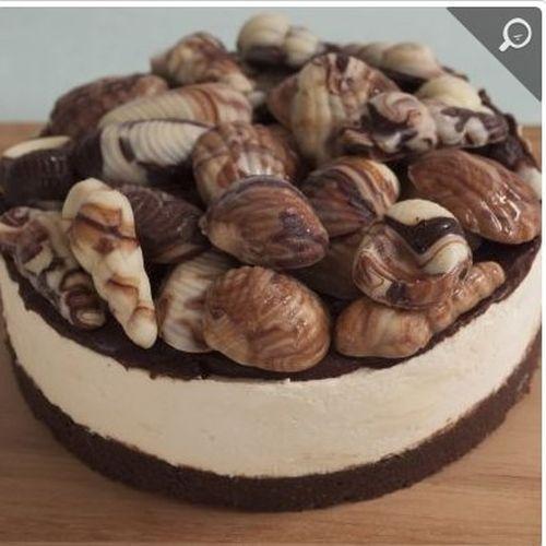 Seashell Vanilla Cheesecake